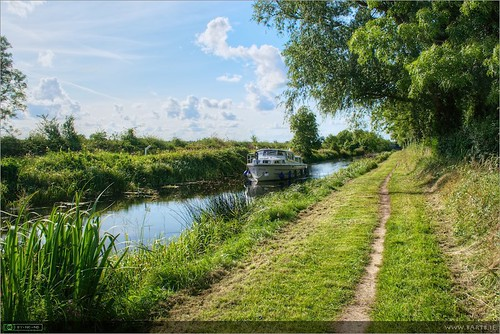 August on the Royal Canal