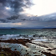 Coles Bay, Tasmania, Australia. It was so windy in this photo that I had to lean into the wind to stay on my feet.