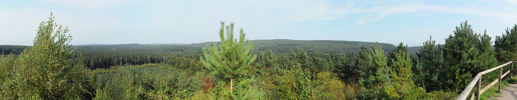 Forest of Dean panorama from New Fancy View