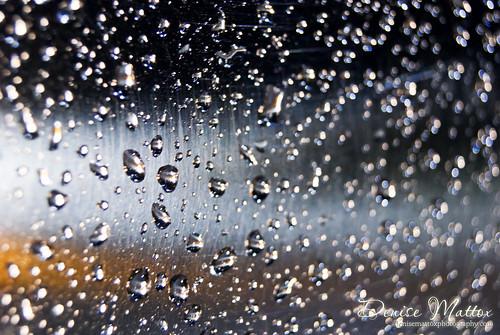 303: Water spots