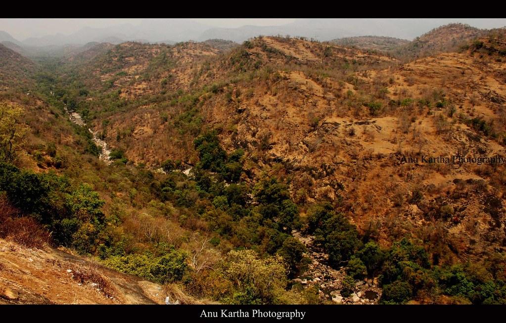 Chinnar Wildlife Sanctuary | Anu Kartha | Flickr