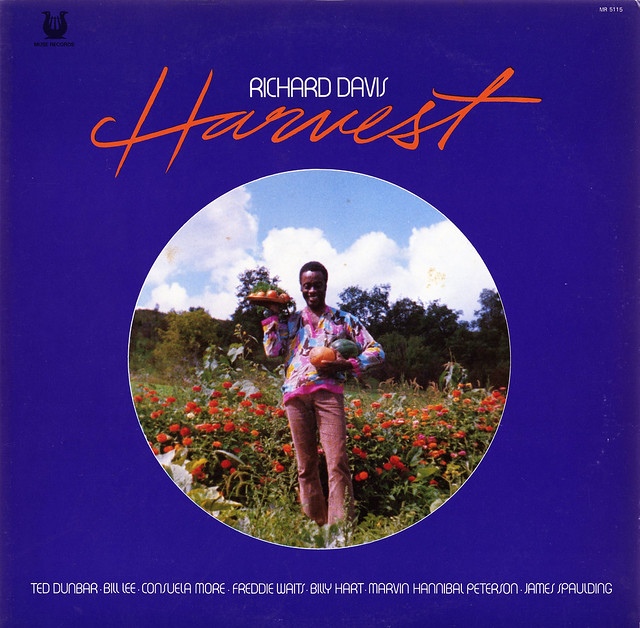 Richard Davis-Harvest