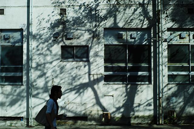 校舎外壁の影絵