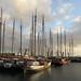 Vlieland, 5-9-2012 (02) by Guus Krol