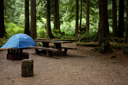 Mora Campground in Olympic National Park