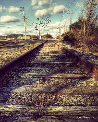Along the Tracks