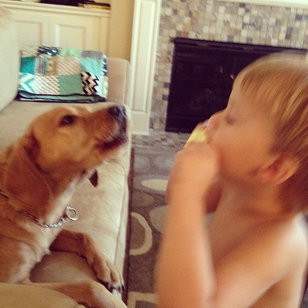 Barley loves to sing while Cian plays the harmonica!