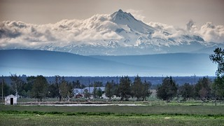 Mount Hood from afar.  Near Powell Butte, OR.