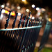 a little fence and bokeh