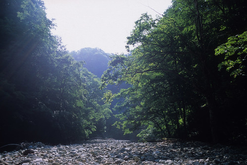 20120730006shirakami.jpg
