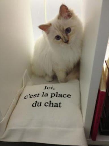 Choupette