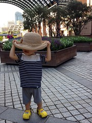 帽子とらちゃん (2012/8/12)