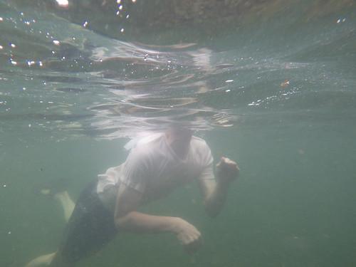 防水カメラ写真_IMGP0293
