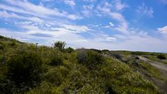Juniper Dunes OHV Area