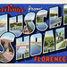 Greetings from Muscle Shoals, Florence, Alabama - Large Letter Postcard by Shook Photos