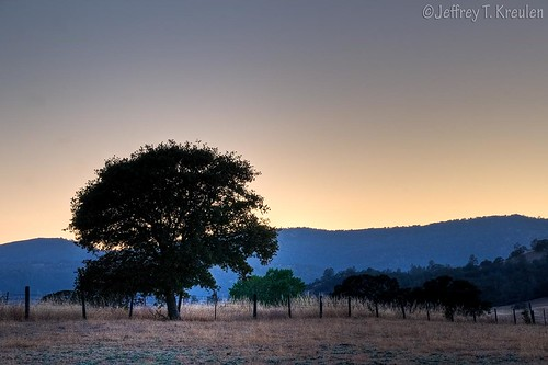 california sunset mountain tree nature fence landscape oak backlit arbuckle sacramentovalley colorphotoaward