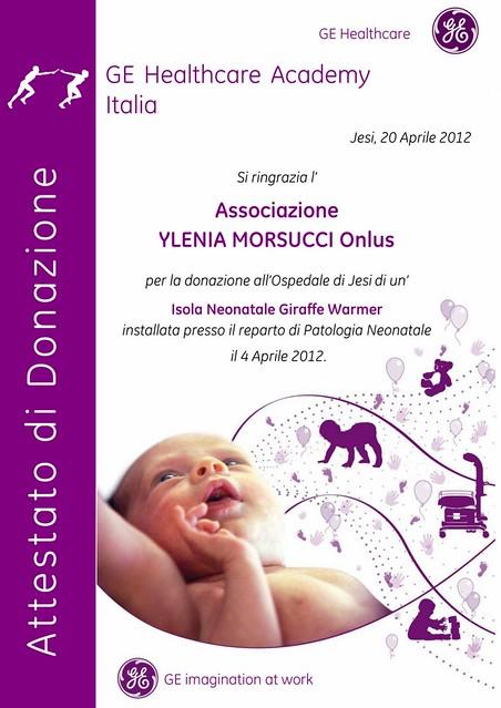 Terza donazione: isola neonatale