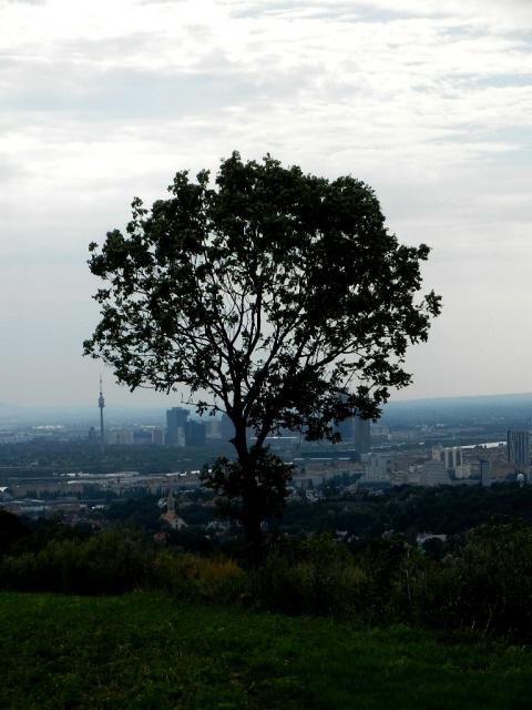 Kahlenberg_2012_10