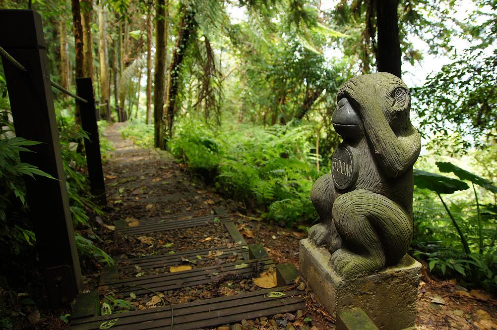 猴洞步道-27