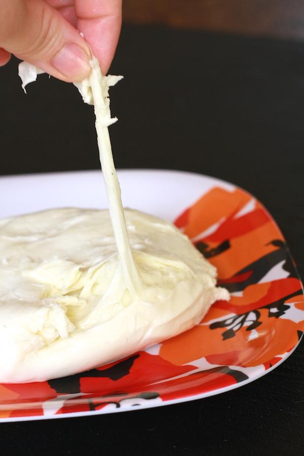 Homemade Mozzarella 5 (1)