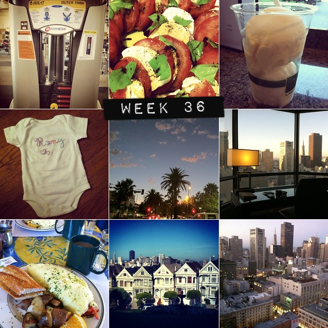 2012 in pictures: week 36