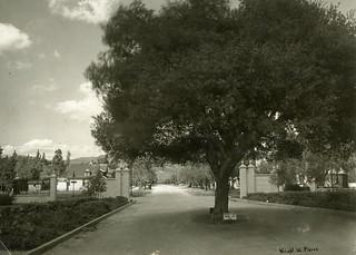 College Gates circa 1915 (built in 1914)