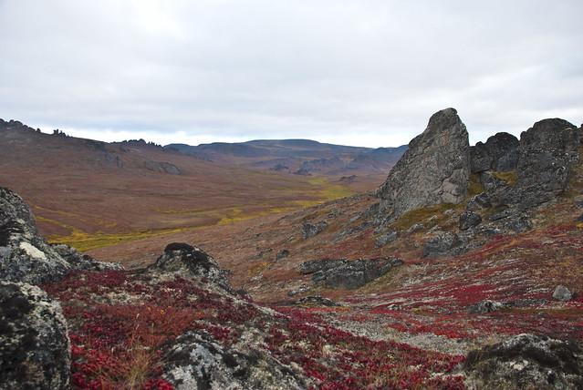 Reserva Nacional del Puente de Beringia. Alaska.