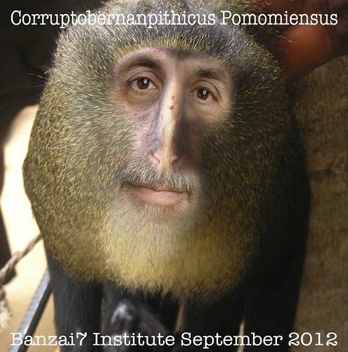 NEW SPECIES DISCOVERED: CORRUPTOBERNANPITHICUS POMOMIENSUS by Colonel Flick