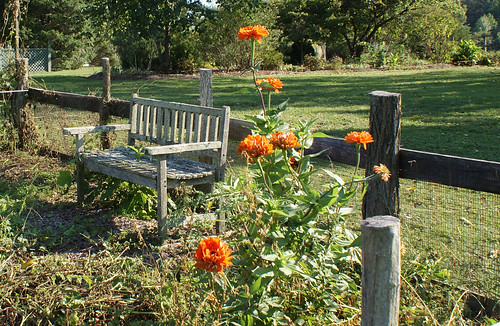 Summerseat Farm, early fall garden