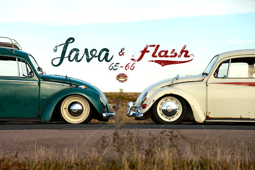 Java & Flash