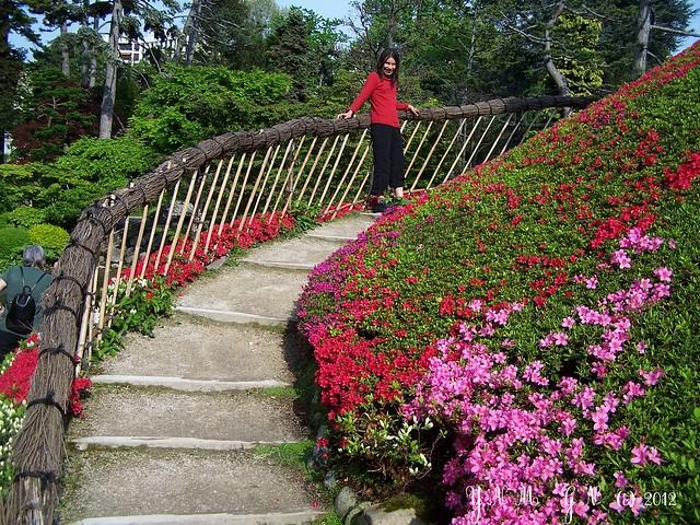 Jardin japonais albert kahn boulogne billancourt m tro - Mobilier jardin grenoble boulogne billancourt ...