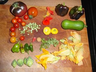harvest of garden