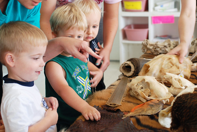 HMNS Outreach: Wildlife on Wheels