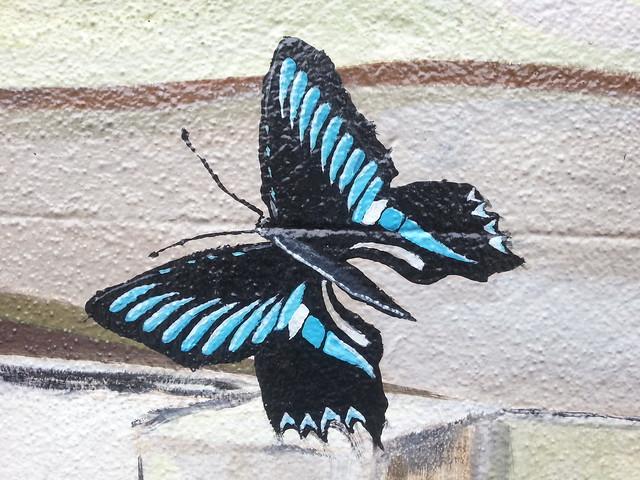 Black/Blue Butterfly street art - Annandale, Leichhardt