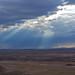 Arizona_Day_2-159.jpg by pewterchrome