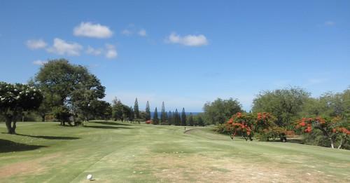 Makaha Valley Country Club 013b