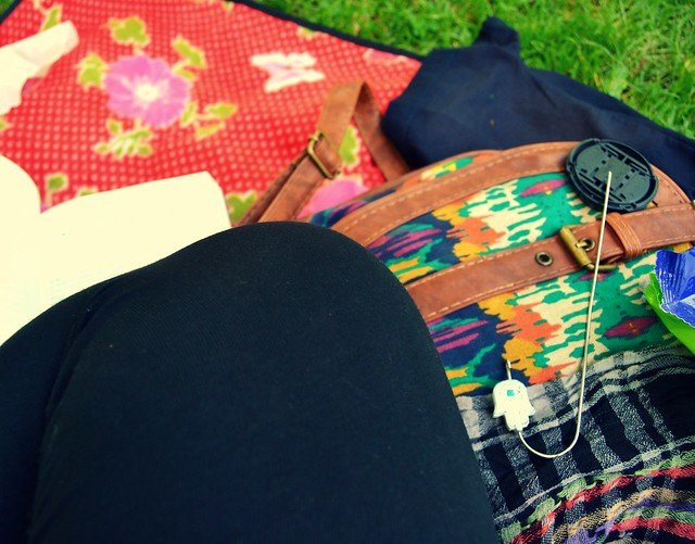 ultimo pic-nic despues de clases