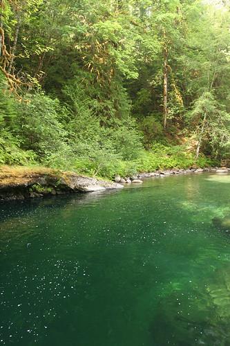 swimming area below Englishman River Falls