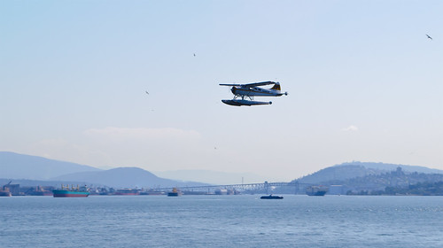 Harbour Air - C-FOCY