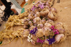 Braided Softneck Italian Garlic