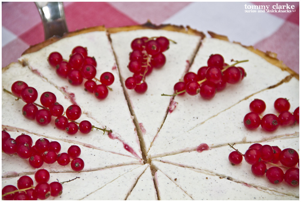 Vanilla and Redcurrant Cheesecake