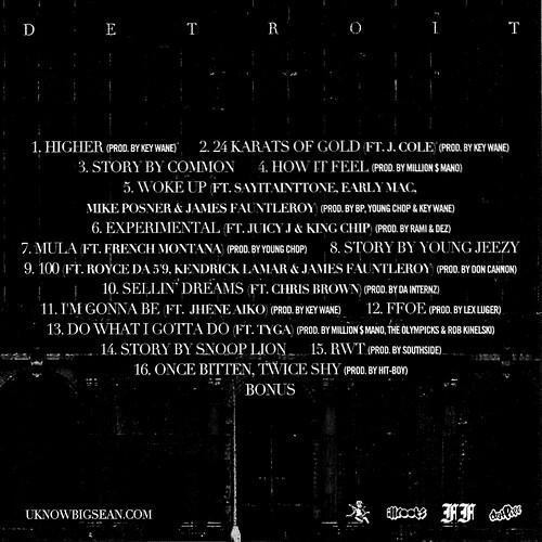 detroit-back