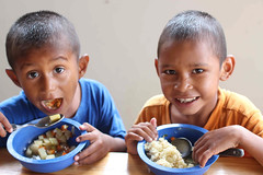 FMSC Distribution Partner - Honduras