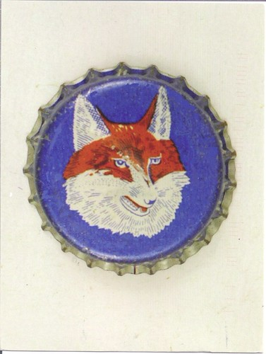 Fox Head Bear