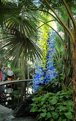 Chihuly Glass NYBG