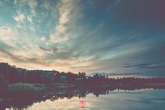 245/365 Autumn Sky