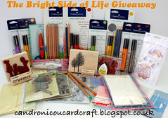 August Giveaway by newkidfish (Cathy A)