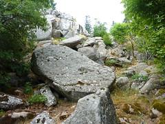 Tour de la plaine d'Uovacce : le pied du versant du chaos de blocs vers Malpaseu