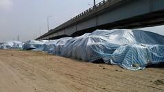 台17濱海公路大肚溪橋下的暫置區(吳仁邦攝)