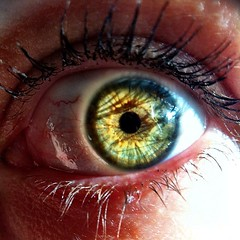 iris, contact lens, brown, macro photography, eyelash, eyelash extensions, close-up, eye, organ,